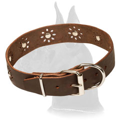 Brown Studded Leather Collar