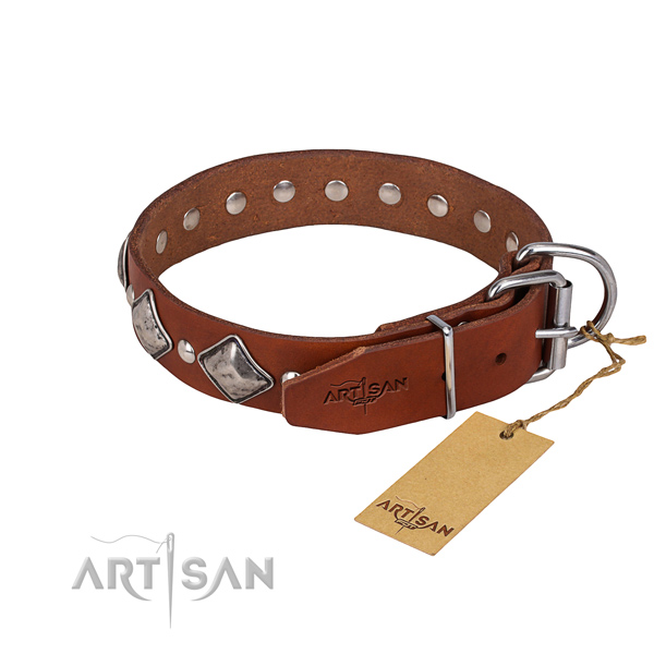 Dependable leather dog collar with strong fittings