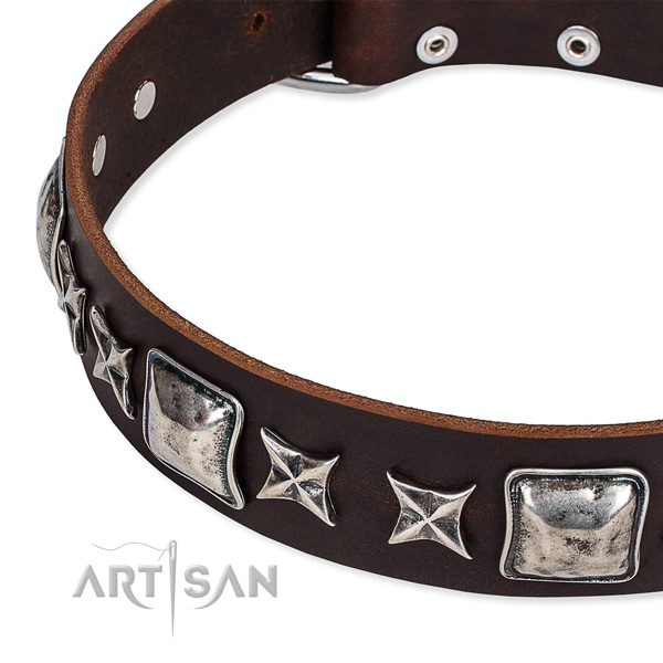 Full grain genuine leather dog collar with studs for daily use