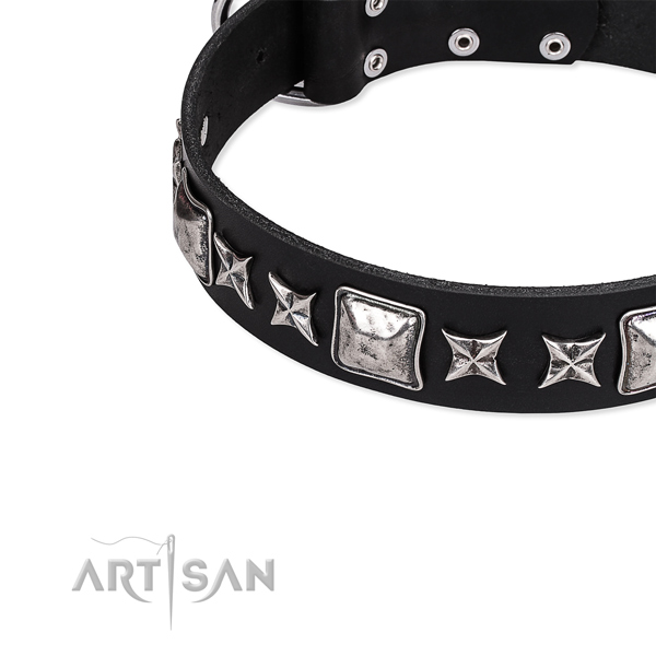 Full grain natural leather dog collar with stunning decorations