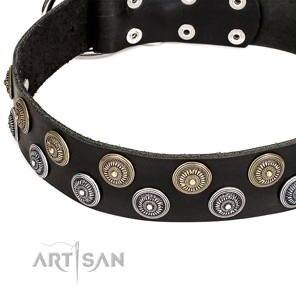 Natural genuine leather dog collar with exquisite studs