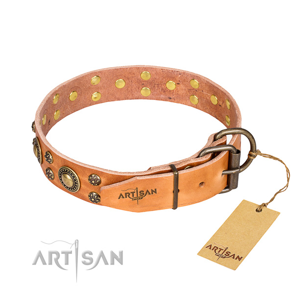 Stylish walking genuine leather collar with adornments for your doggie