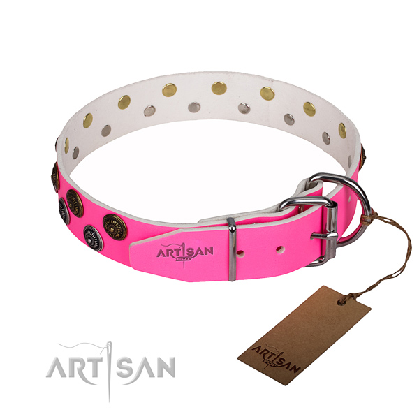 Daily walking full grain natural leather collar with adornments for your doggie