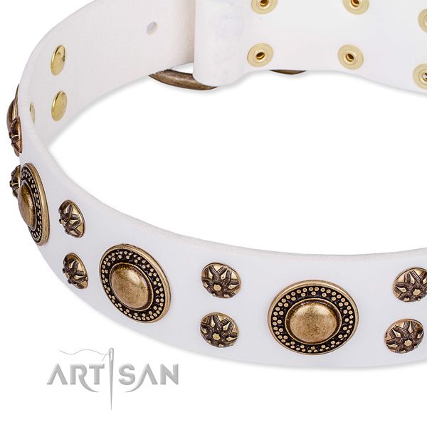 Leather dog collar with stunning embellishments