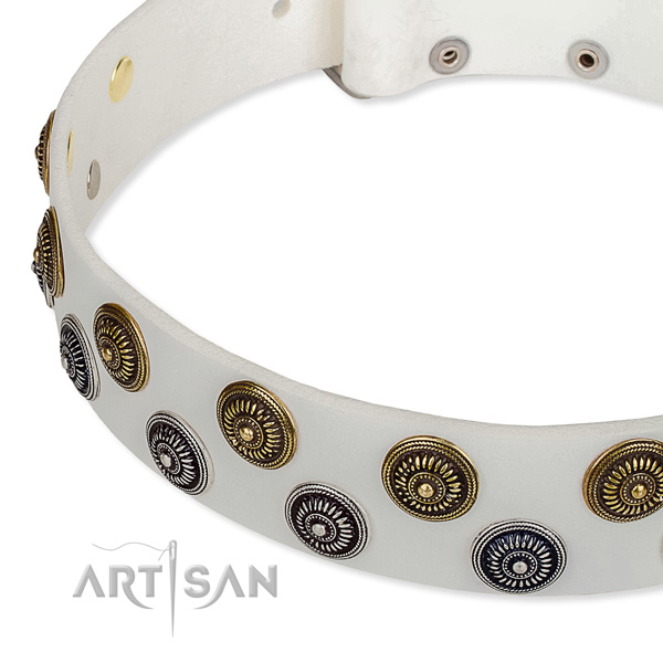 Genuine leather dog collar with exceptional embellishments