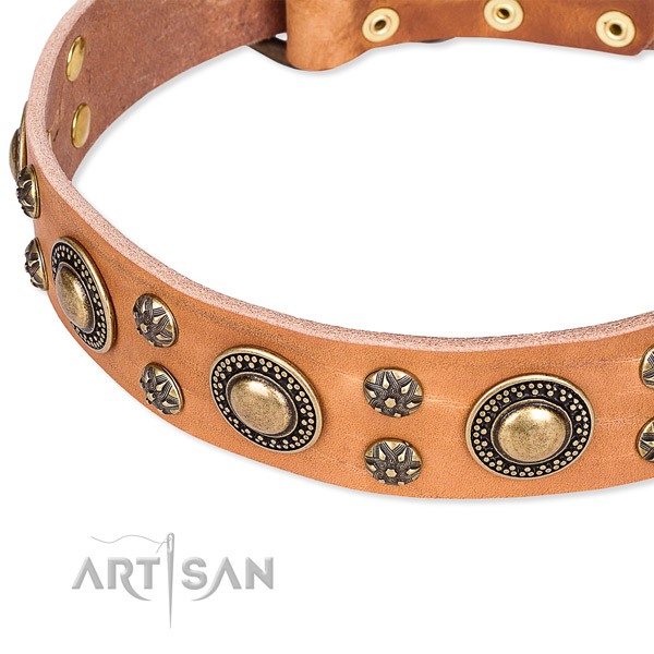 Leather dog collar with unique decorations