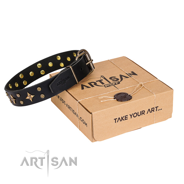Embellished genuine leather dog collar for daily walking