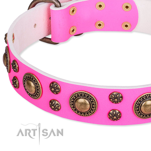 Natural genuine leather dog collar with unusual adornments