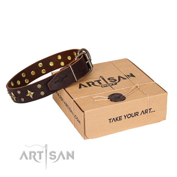 Decorated full grain natural leather dog collar for stylish walking