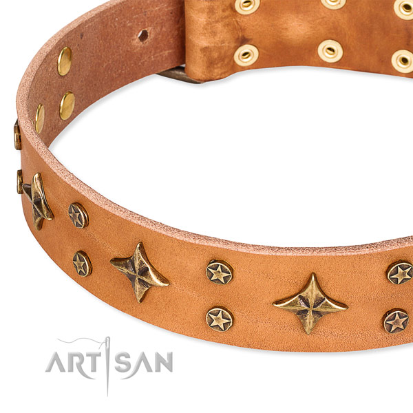 Full grain genuine leather dog collar with inimitable embellishments