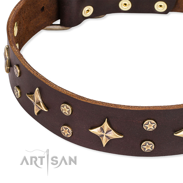 Full grain genuine leather dog collar with incredible decorations