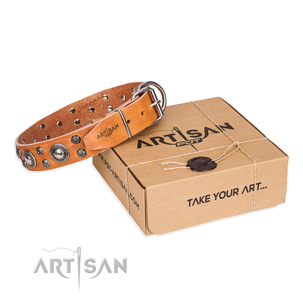 Trendy genuine leather dog collar for walking in style
