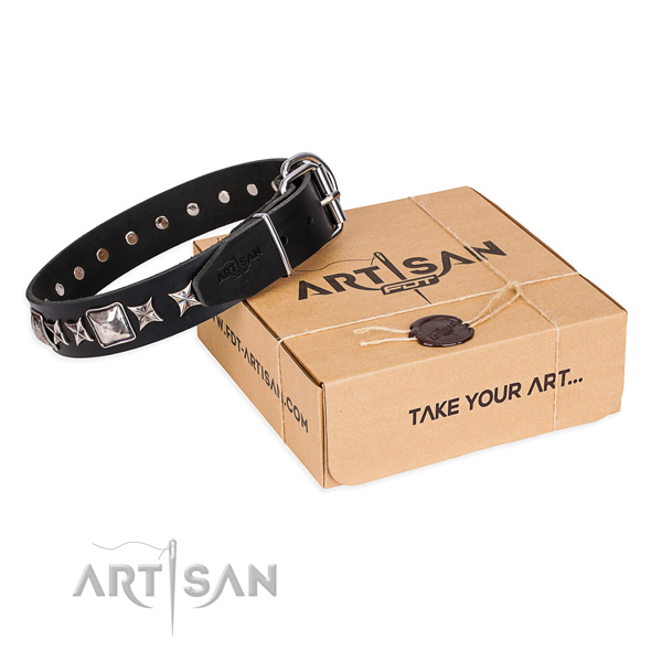 Embellished leather dog collar for stylish walking
