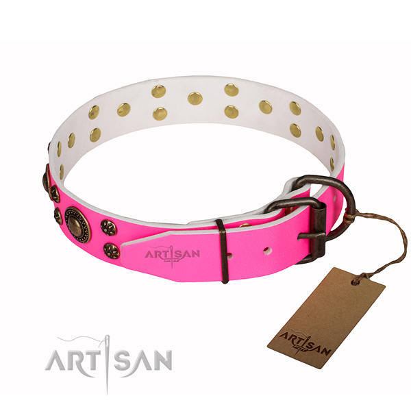 Inimitable genuine leather dog collar for everyday use