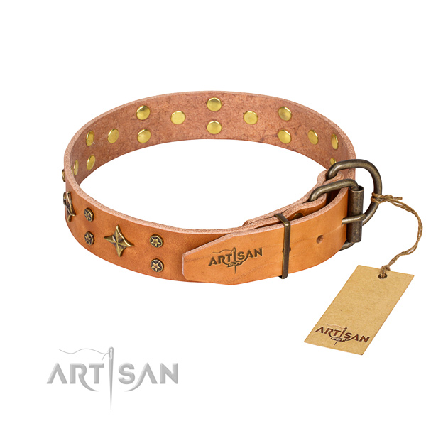 Everyday walking genuine leather collar with decorations for your doggie