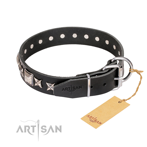 Stylish walking full grain leather collar with studs for your four-legged friend
