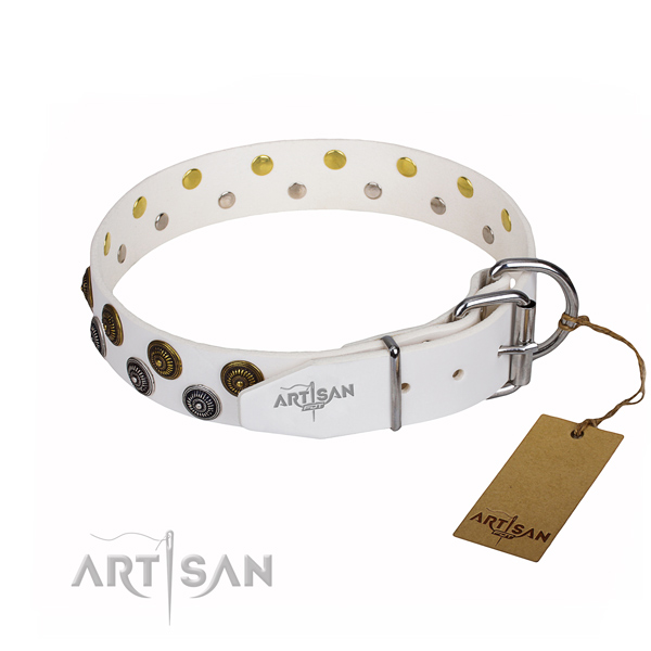 Walking leather collar with adornments for your canine