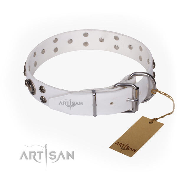 Everyday walking full grain leather collar with adornments for your canine