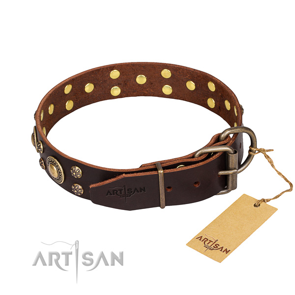 Walking full grain leather collar with embellishments for your doggie