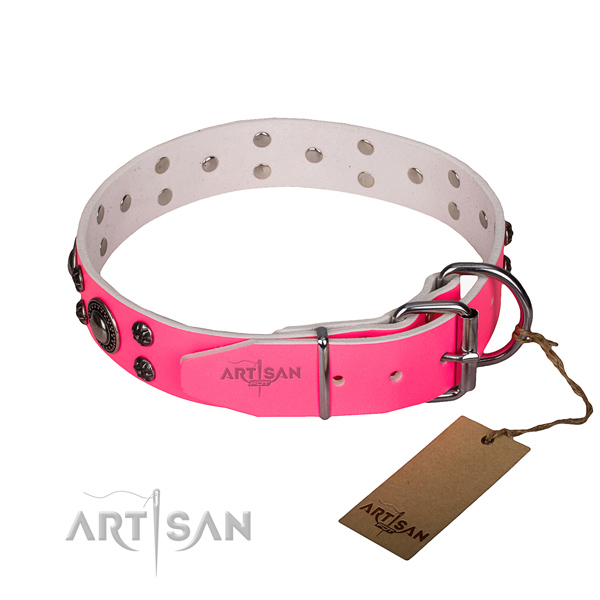 Daily use full grain leather collar with corrosion proof buckle and D-ring