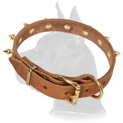 Top-quality Great Dane Leather Dog Collar