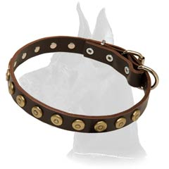 Quality Great Dane Leather Collar