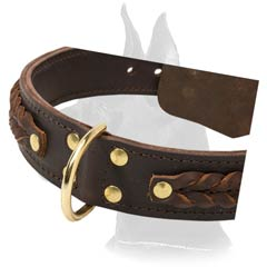 Stunning Great Dane Leather Dog Collar