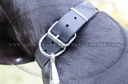 Superb Great Dane Leather Collar with firm hardware