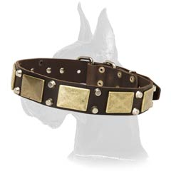War Great Dane Leather Dog Collar