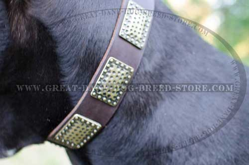 Great Dane Leather Dog Collar