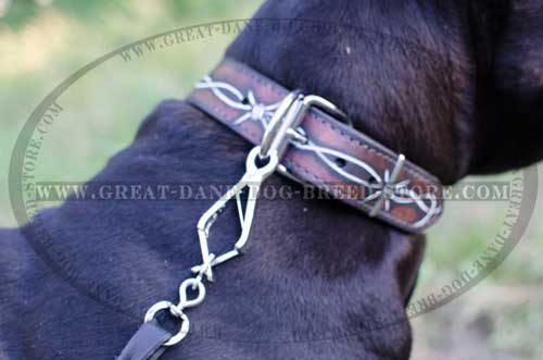 Great Dane Leather Collar with firm hardware