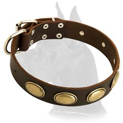 Trendy Great Dane Leather Dog Collar
