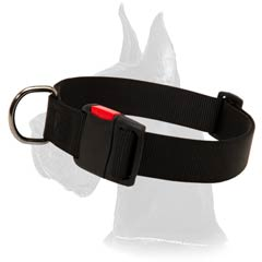 Everyday Great Dane Nylon Dog Collar