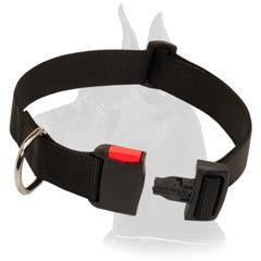 Handy Great Dane Nylon Dog Collar