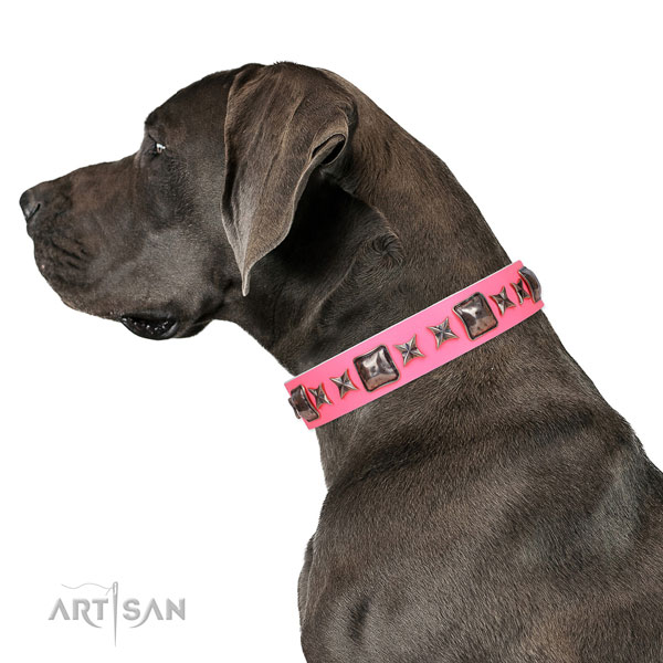 Unique embellished genuine leather dog collar for everyday walking