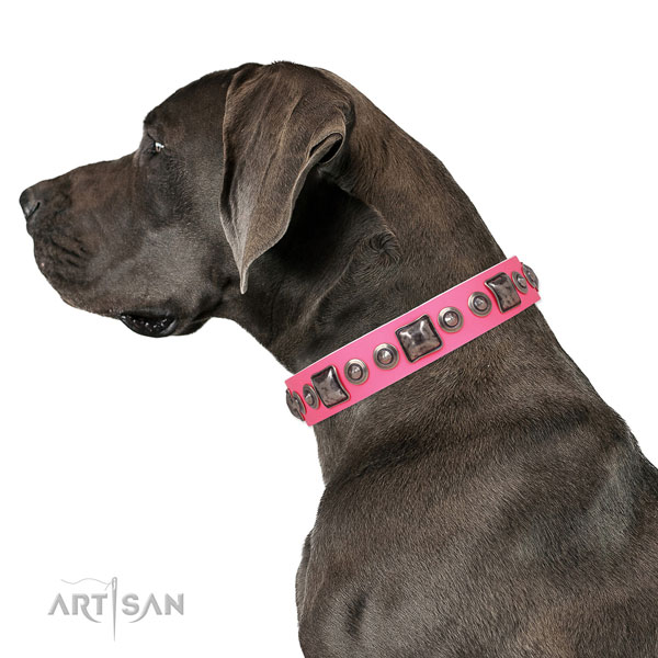 Amazing adorned leather dog collar