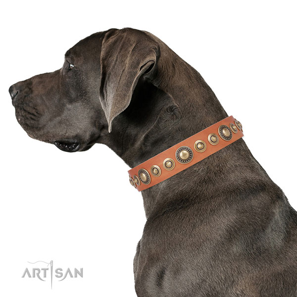 Strong buckle and D-ring on genuine leather dog collar for everyday use