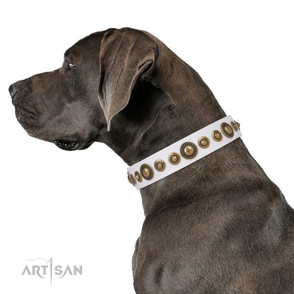 Durable buckle and D-ring on natural leather dog collar for walking in style