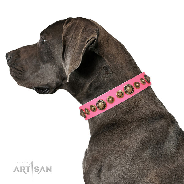 Rust-proof buckle and D-ring on full grain leather dog collar for daily walking