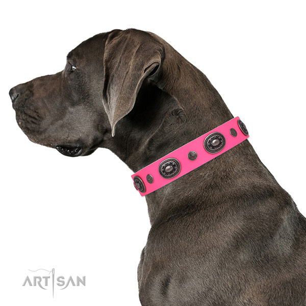 Natural leather dog collar with reliable buckle and D-ring for easy wearing