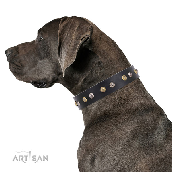 Leather dog collar with reliable buckle and D-ring for walking