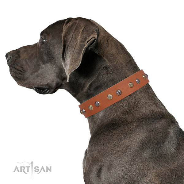 Natural leather dog collar with rust-proof buckle and D-ring for daily walking