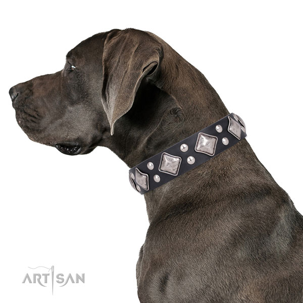 Comfy wearing embellished dog collar made of strong genuine leather