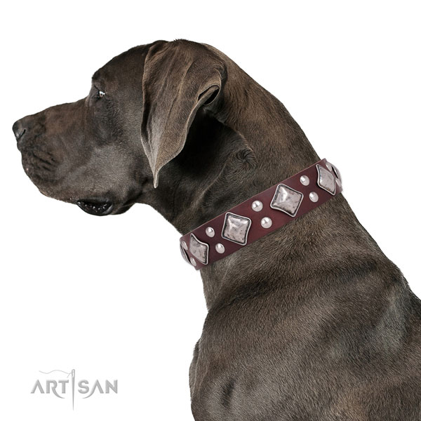 Easy wearing embellished dog collar made of top rate genuine leather