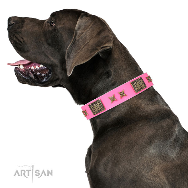 Extraordinary embellishments on daily walking full grain natural leather dog collar