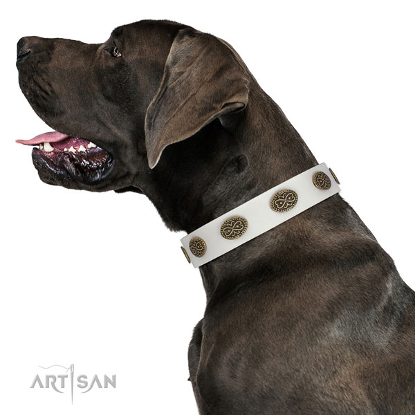 Inimitable decorations on handy use full grain genuine leather dog collar