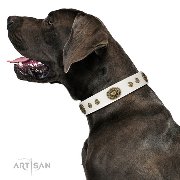 Stunning decorations on comfortable wearing dog collar