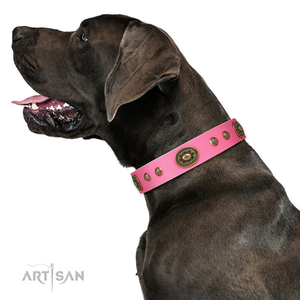 Stunning embellishments on comfy wearing dog collar