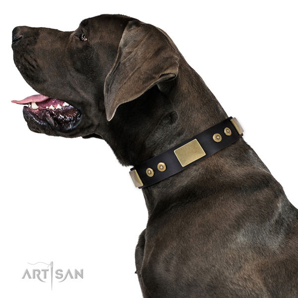 Durable daily use dog collar of leather