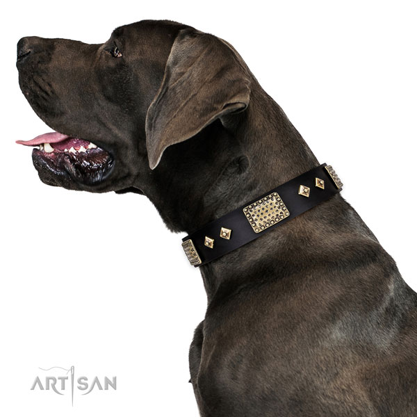Top rate easy wearing dog collar of natural leather